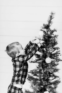 00010-©ADHPhotography2019--Marvin--ChristmasMini--NOVEMBER15
