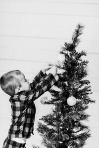 00008-©ADHPhotography2019--Marvin--ChristmasMini--NOVEMBER15