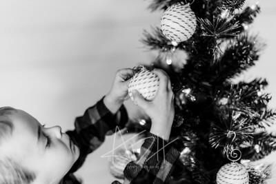 00014-©ADHPhotography2019--Marvin--ChristmasMini--NOVEMBER15
