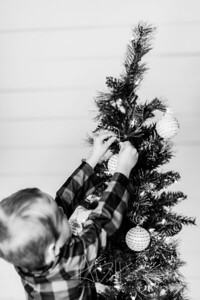 00020-©ADHPhotography2019--Marvin--ChristmasMini--NOVEMBER15