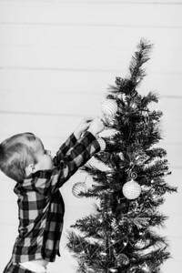 00006-©ADHPhotography2019--Marvin--ChristmasMini--NOVEMBER15