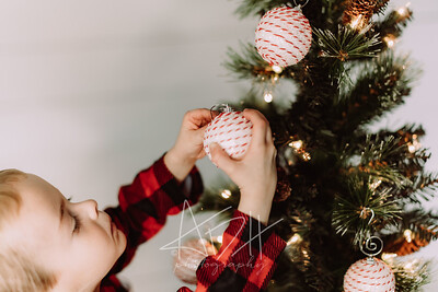 00013-©ADHPhotography2019--Marvin--ChristmasMini--NOVEMBER15