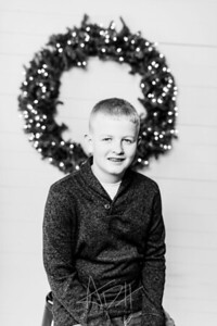 00002-©ADHPhotography2019--Wisnieski--ChristmasFarmhouseMini--December6bw