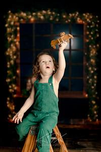 00088©ADHPhotography2020--Bburns--ChristmasMini--November16