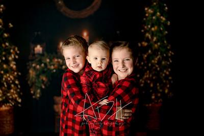 00063©ADHPhotography2020--DouglasStorrs--NightBeforeChristmasMini--November21