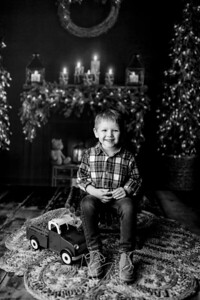 00008©ADHPhotography2020--Sharp--ChristmasMini--November19bw