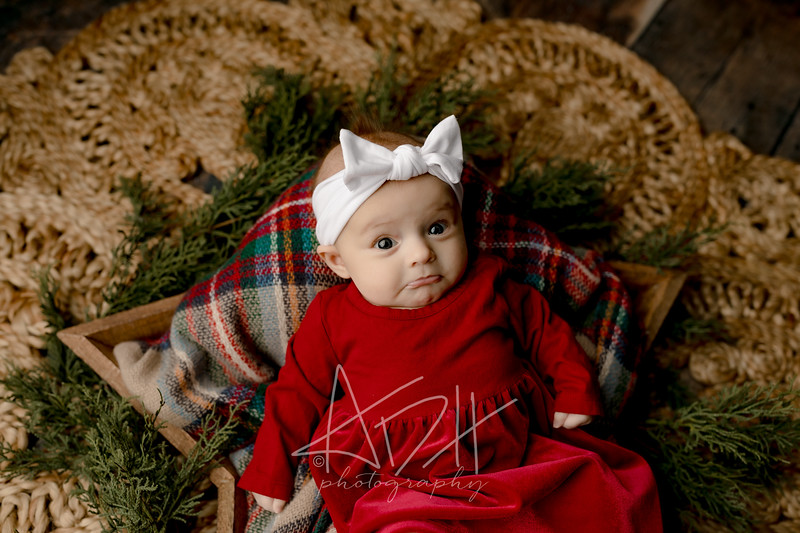 00001©ADHPhotography2020--Wiemers--ChristmasMini--December11