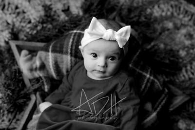 00010©ADHPhotography2020--Wiemers--ChristmasMini--December11bw