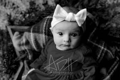 00011©ADHPhotography2020--Wiemers--ChristmasMini--December11bw