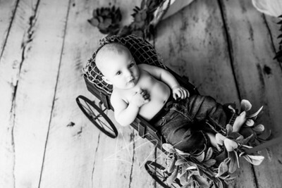 00003--©ADHPhotography2020--Pollman--EASTERMINI--April4bw