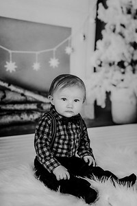 00014--©ADHphotography2018--Buhr(LO)--ChristmasQuicktakes--December16
