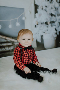 00015--©ADHphotography2018--Buhr(LO)--ChristmasQuicktakes--December16