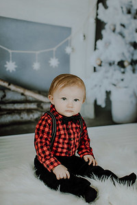 00013--©ADHphotography2018--Buhr(LO)--ChristmasQuicktakes--December16