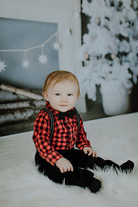 00019--©ADHphotography2018--Buhr(LO)--ChristmasQuicktakes--December16
