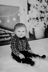 00016--©ADHphotography2018--Buhr(LO)--ChristmasQuicktakes--December16