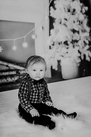 00008--©ADHphotography2018--Buhr(LO)--ChristmasQuicktakes--December16