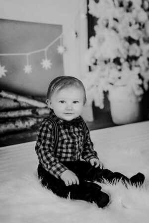 00020--©ADHphotography2018--Buhr(LO)--ChristmasQuicktakes--December16