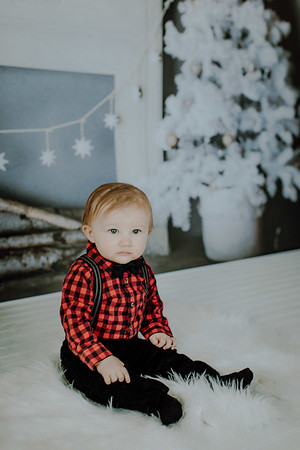 00007--©ADHphotography2018--Buhr(LO)--ChristmasQuicktakes--December16