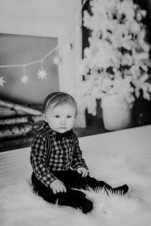 00012--©ADHphotography2018--Buhr(LO)--ChristmasQuicktakes--December16