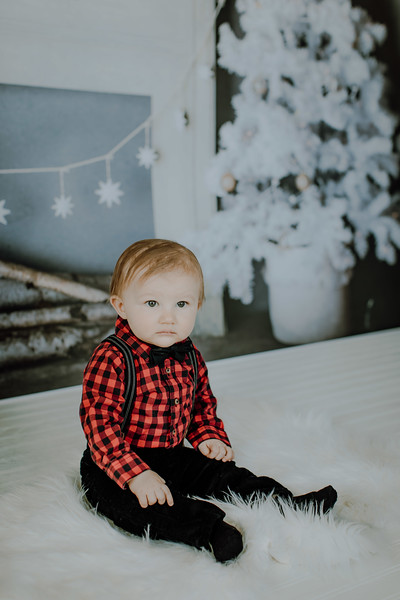00005--©ADHphotography2018--Buhr(LO)--ChristmasQuicktakes--December16