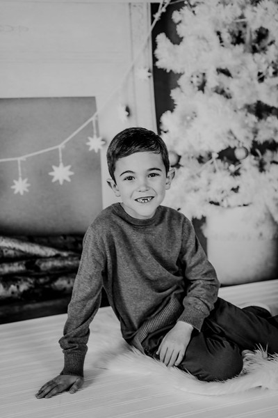 00014--©ADHphotography2018--Rousselle--ChristmasQuicktakes--December15