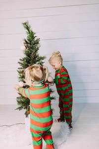 00009-©ADHPhotography2019--Esch--ChristmasMini--November1