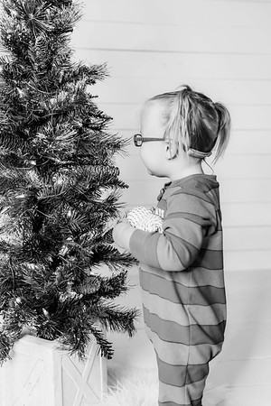 00004-©ADHPhotography2019--Esch--ChristmasMini--November1--bw