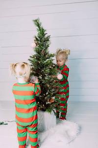 00010-©ADHPhotography2019--Esch--ChristmasMini--November1