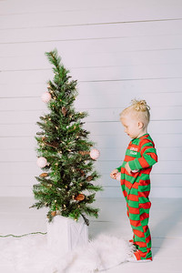 00007-©ADHPhotography2019--Esch--ChristmasMini--November1