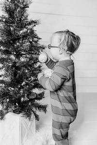 00003-©ADHPhotography2019--Esch--ChristmasMini--November1--bw
