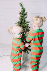 00006-©ADHPhotography2019--Esch--ChristmasMini--November1