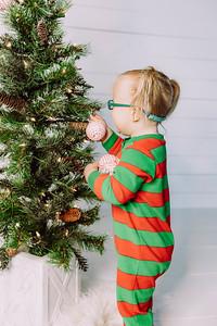 00003-©ADHPhotography2019--Esch--ChristmasMini--November1