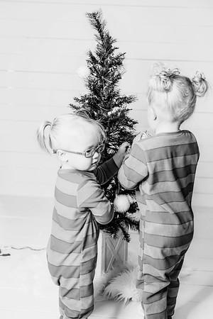 00006-©ADHPhotography2019--Esch--ChristmasMini--November1--bw