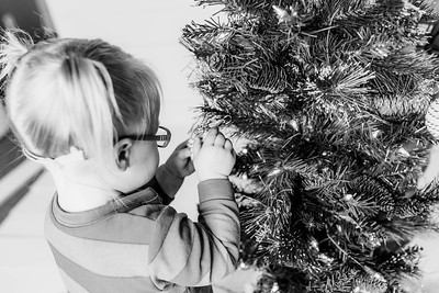 00011-©ADHPhotography2019--Esch--ChristmasMini--November1--bw