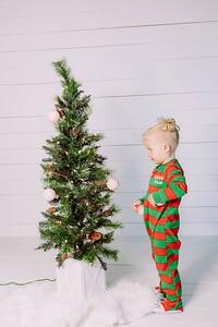 00008-©ADHPhotography2019--Esch--ChristmasMini--November1
