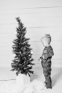 00007-©ADHPhotography2019--Esch--ChristmasMini--November1--bw