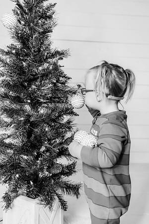 00005-©ADHPhotography2019--Esch--ChristmasMini--November1--bw