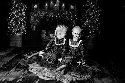 00006©ADHPhotography2020--Esch--ChristmasMini--October20bw