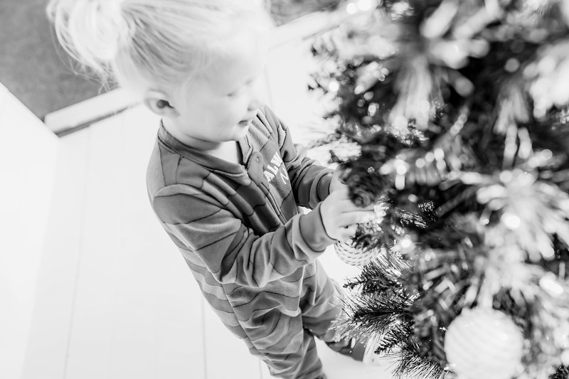 00012-©ADHPhotography2019--Esch--ChristmasMini--November1--bw