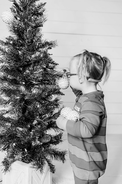 00005-©ADHPhotography2019--Esch--ChristmasMini--November1--bw