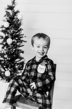 00022-©ADHPhotography2019--Marvin--ChristmasMini--NOVEMBER15