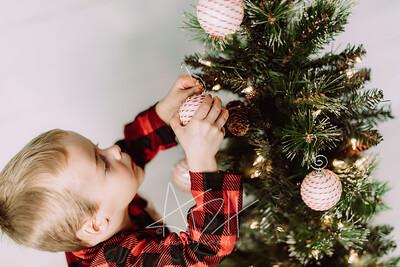 00011-©ADHPhotography2019--Marvin--ChristmasMini--NOVEMBER15