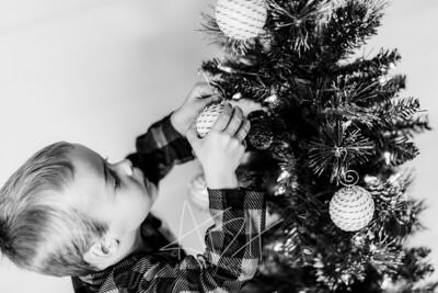 00012-©ADHPhotography2019--Marvin--ChristmasMini--NOVEMBER15