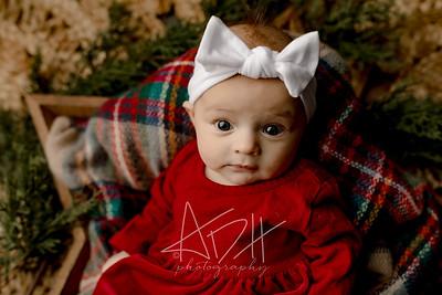 00011©ADHPhotography2020--Wiemers--ChristmasMini--December11