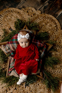 00006©ADHPhotography2020--Wiemers--ChristmasMini--December11