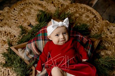 00002©ADHPhotography2020--Wiemers--ChristmasMini--December11