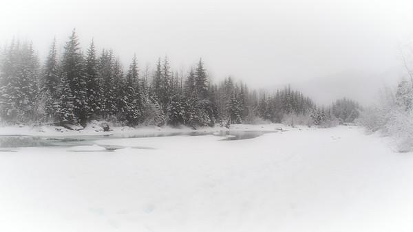 Quiet Winter Walk