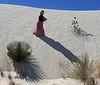 Buried Yucca