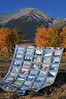 I've been wanting to shoot my 14er quilt in front of a 14er ever since I finished it.  Bluebird skies on Thursday morning fooled me into thinking I might get more than one 14er backdrop before the day was over.  But rain kept me from pulling the quilt out a second time.  Yes, those luscious blue skies gave way to rain before noon!