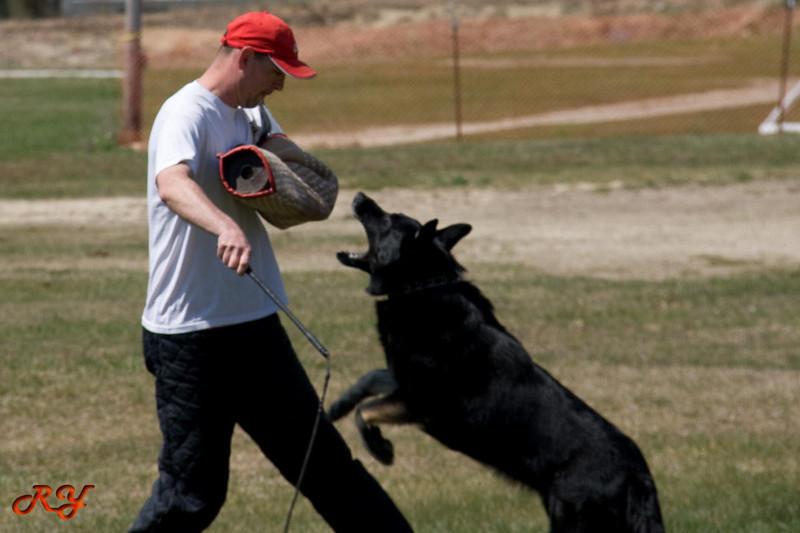training-036